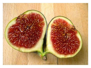 Health Benefits Of Eating Fig Daily