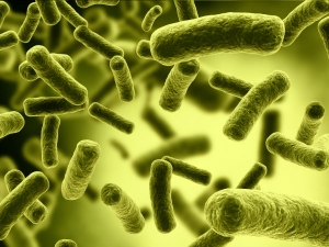 How Treat Bacterial Infections