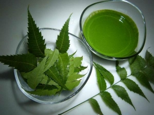 Neem Water For Hair Growth