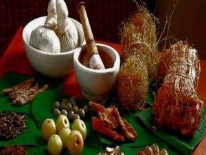 Health Benefits Dashamoola As Per Ayurveda