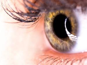 Guide Eye Cancers