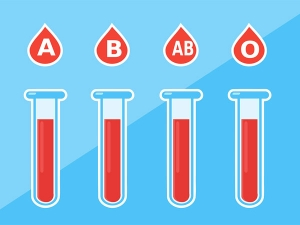 How Blood Type Defines Personality