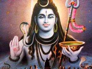 Flowers That Should Offer Siva Prosperity