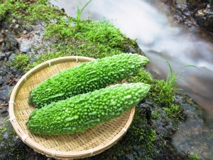 Healthy Herbs That Bring Down Sperm Count Men