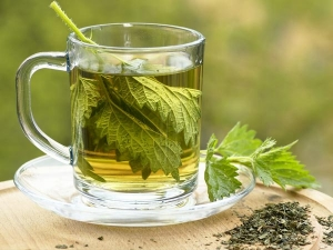 Health Benefits Nettle Leaf Boiled Water