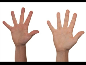 How The Length Finger Reveal About Your Intimate Life