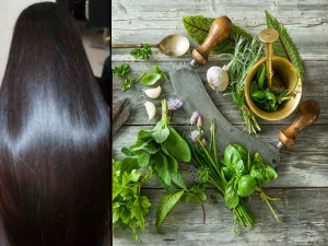Homemade Hair Oils For Long And Shiny Hair