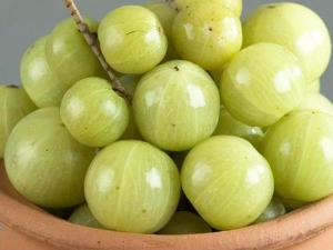 Benefits Of Amla For Baby In The Womb