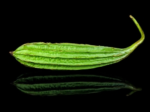 Health Benefits Boiled Ridge Gourd