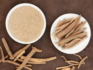 Ashwagandha With Milk Traditional Ayurvedic Remedy