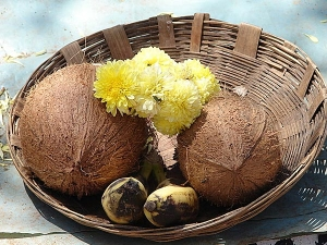 How To Predict Vishu Luck With One 3 Eyed Coconut