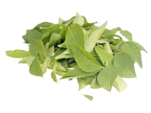 Cholesterol Treatment Using Curry Leaves