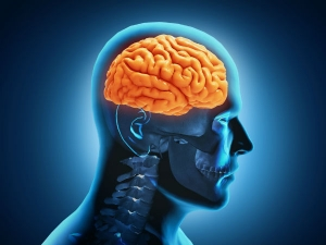 Signs And Symptoms Of Brain Death