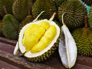 How Durian Can Help Women In Conceiving