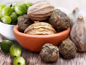 Health Benefits Of Terminalia Bellirica
