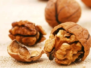 Walnut Health Benefits For Kids