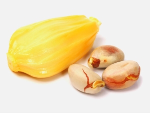 How To Store Jackfruit Seeds