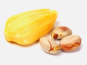 How To Store Jackfruit Seeds
