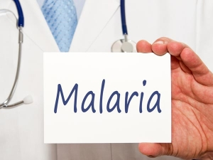 Study Drug Resistant Malaria Parasites Spreading Across South East Asia