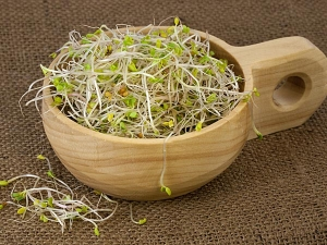 Health Benefits And Side Effects Of Sprouts During Pregnancy