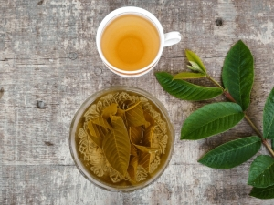 Guava Leaf Tea To Control Diabetes