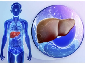 How To Heal Fatty Liver With Natural Ways