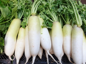 Healthiest Winter Vegetables