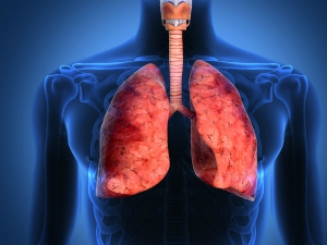Warning Signs Of Lung Disease