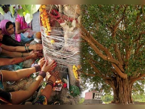 Why Hindus Worship Trees And Plants