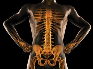 Natural Ways To Build Healthy Bones