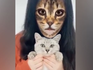 Cats Hilarious Reaction When They See Cat Filter On Owner S Faces
