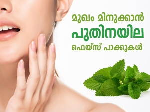 Mint Leaves Face Pack For Oily And Pimple Skin