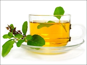 Reasons To Have A Sip Of Tulsi Water Every Day Morning