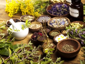 Natural Fertility Herbs For Men And Women