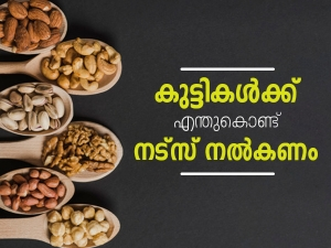 Why You Should Include Nuts In Your Child S Diet