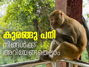 Monkey Fever Causes Symptoms Treatment And Prevention