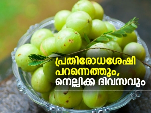 Reasons Why You Must Include Amla In Your Diet