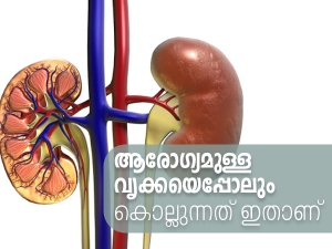Most Popular Foods That Can Seriously Damage Your Kidneys