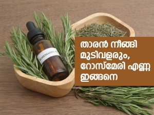 How To Use Rosemary Oil For Hair