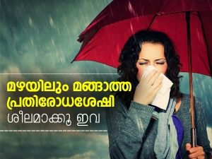 Herbs You Must Have During Monsoon For Immunity And Strength