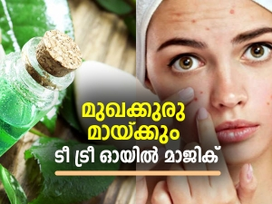 How To Use Tea Tree Oil For Acne Prone Skin