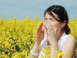 Easy Ways To Prevent Pollen Allergies