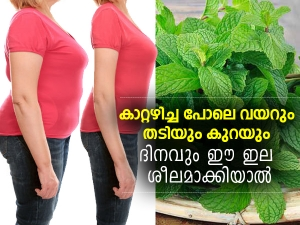 Ways To Use Mint Leaves For Weight Loss
