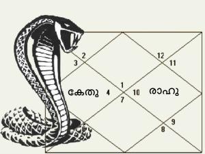 What Are The Effects Of Rahu Mahadasa