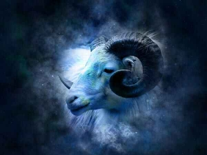 Most Attractive Traits Of Each Zodiac Sign In Malayalam