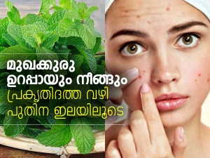 How To Use Mint Leaves To Treat Pimples