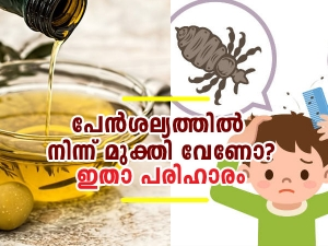How To Use Olive Oil To Get Rid Of Head Lice In Malayalam