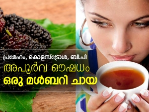 Health Benefits Of Mulberry Tea In Malayalam