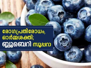Reasons You Should Eat Blueberries Everyday