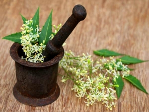Health Benefits Of Neem For Treating Diabetes